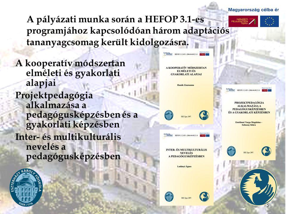 A pályázati munka során a HEFOP 3