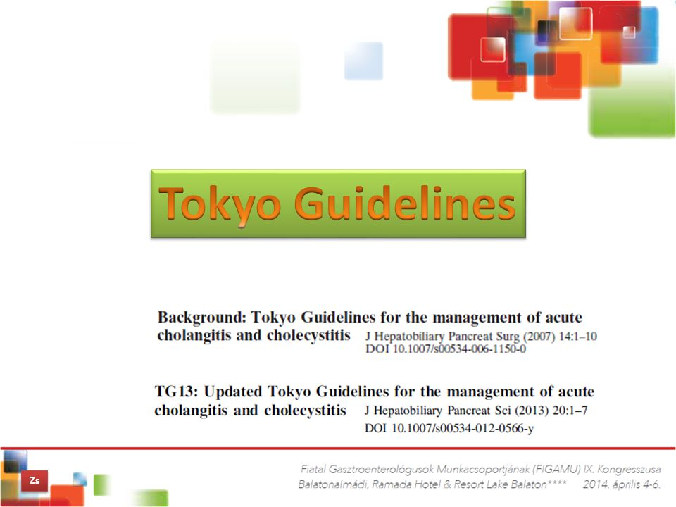 Tokyo Guidelines Zs