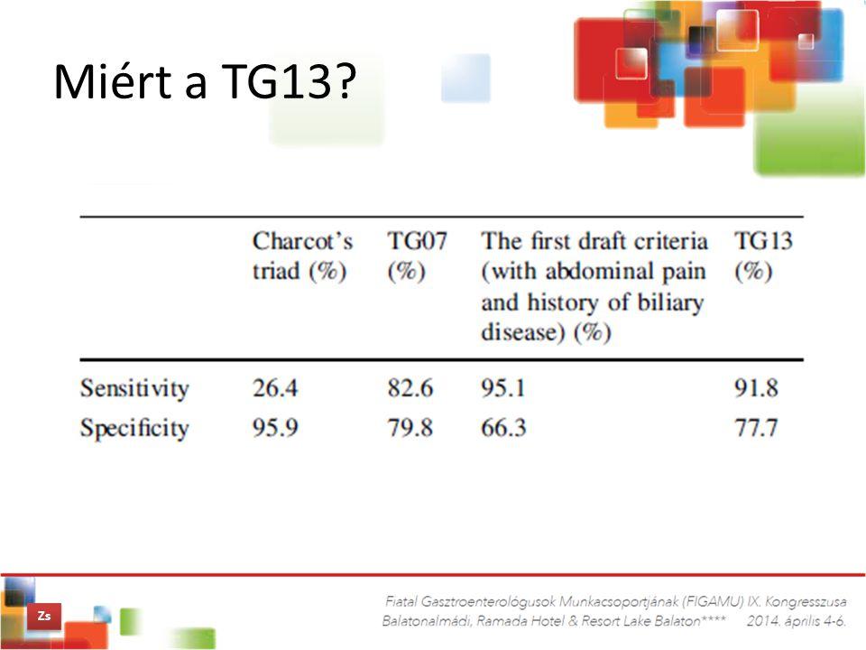 Miért a TG13 Zs