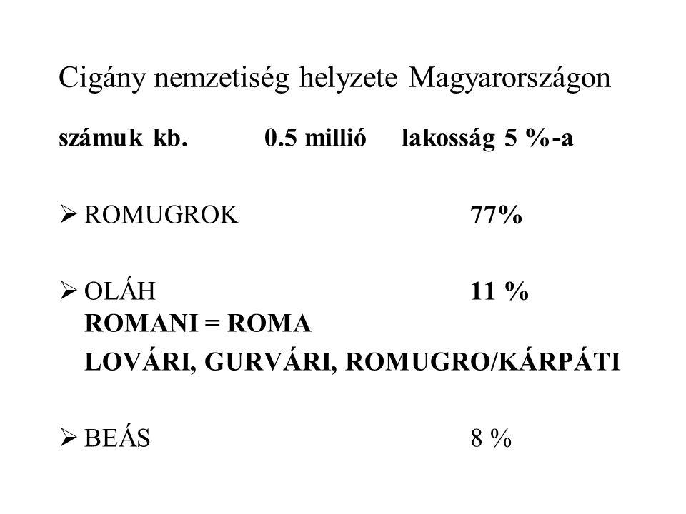 Cigány nemzetiség helyzete Magyarországon