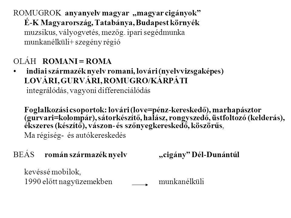 "ROMUGROK anyanyelv magyar ""magyar cigányok"