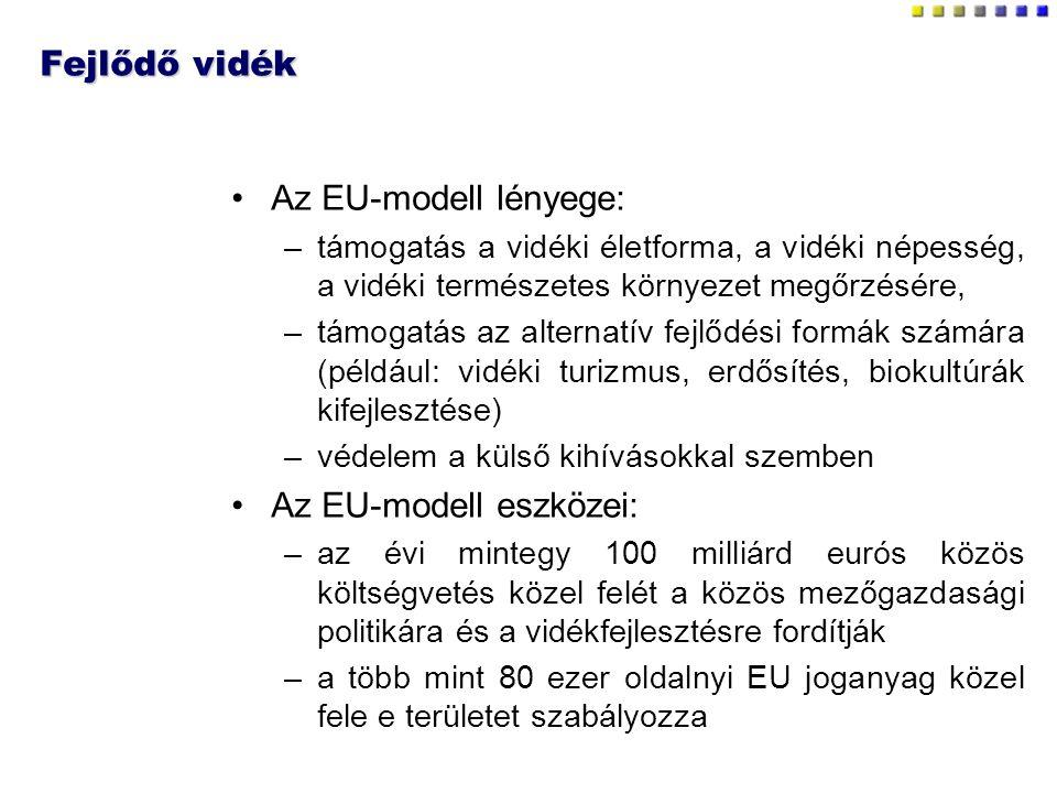 Az EU-modell eszközei: