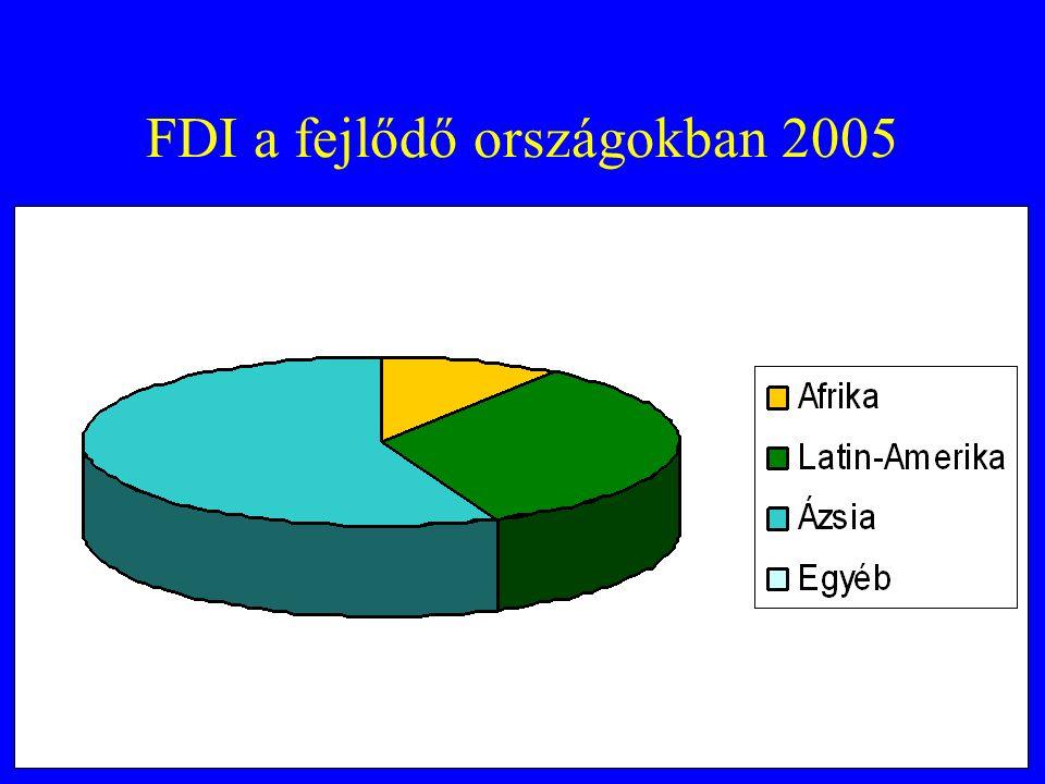 FDI a fejlődő országokban 2005