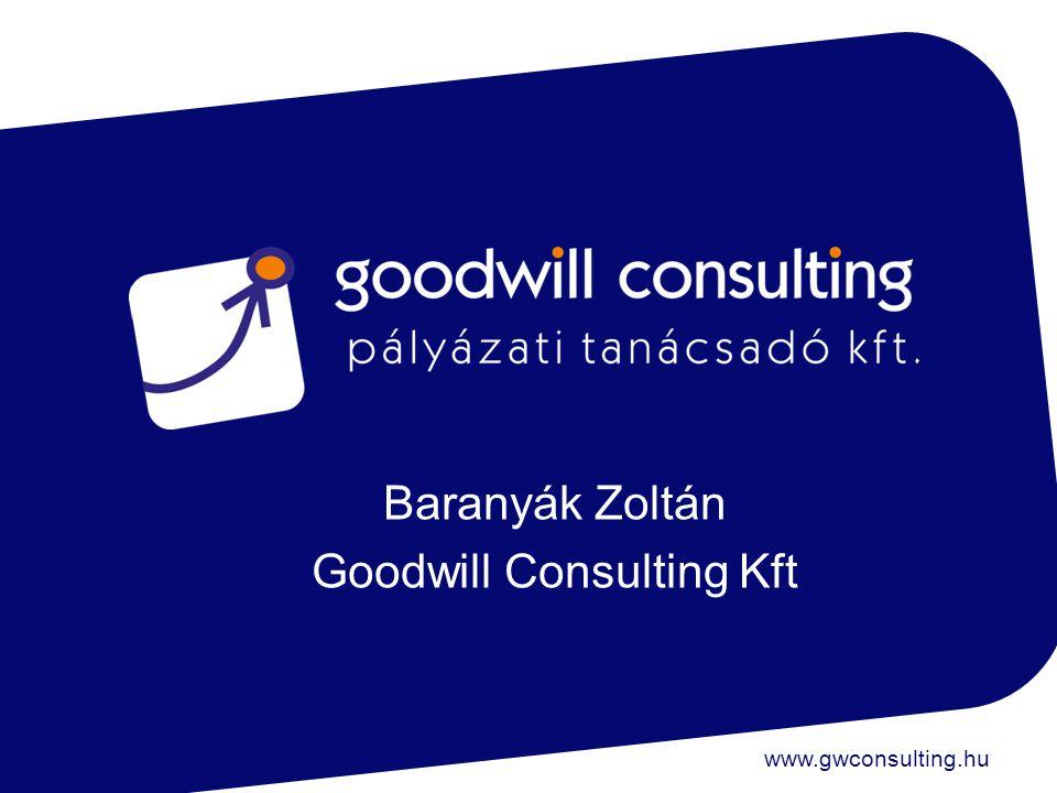 Baranyák Zoltán Goodwill Consulting Kft