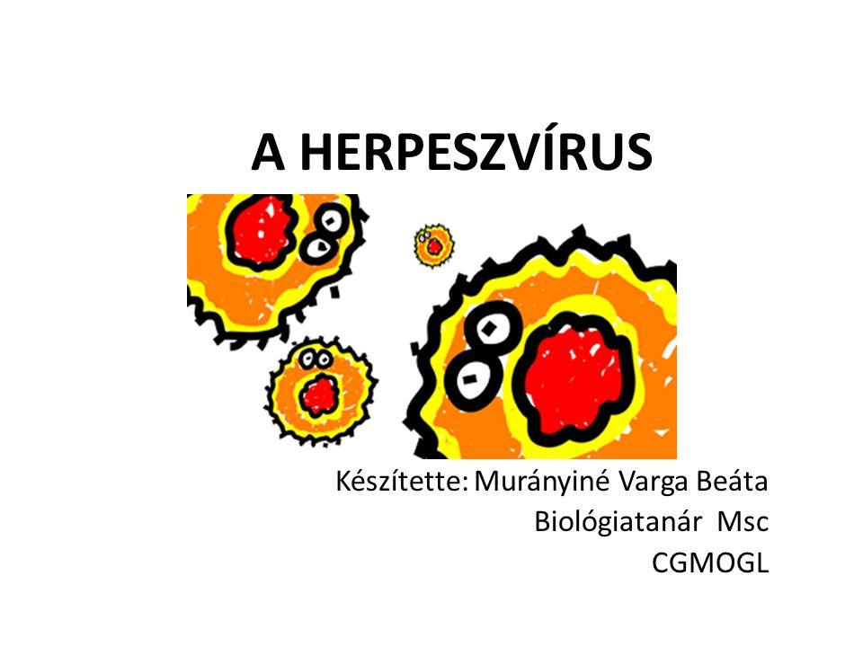 Készítette: Murányiné Varga Beáta Biológiatanár Msc CGMOGL