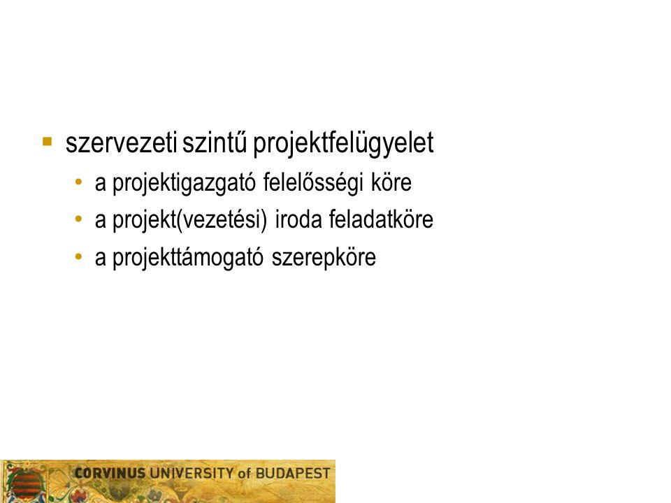 szervezeti szintű projektfelügyelet
