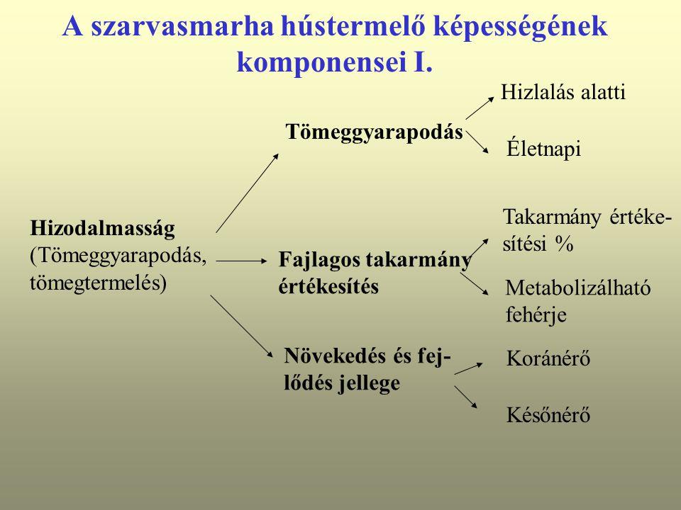 A szarvasmarha hústermelő képességének komponensei I.