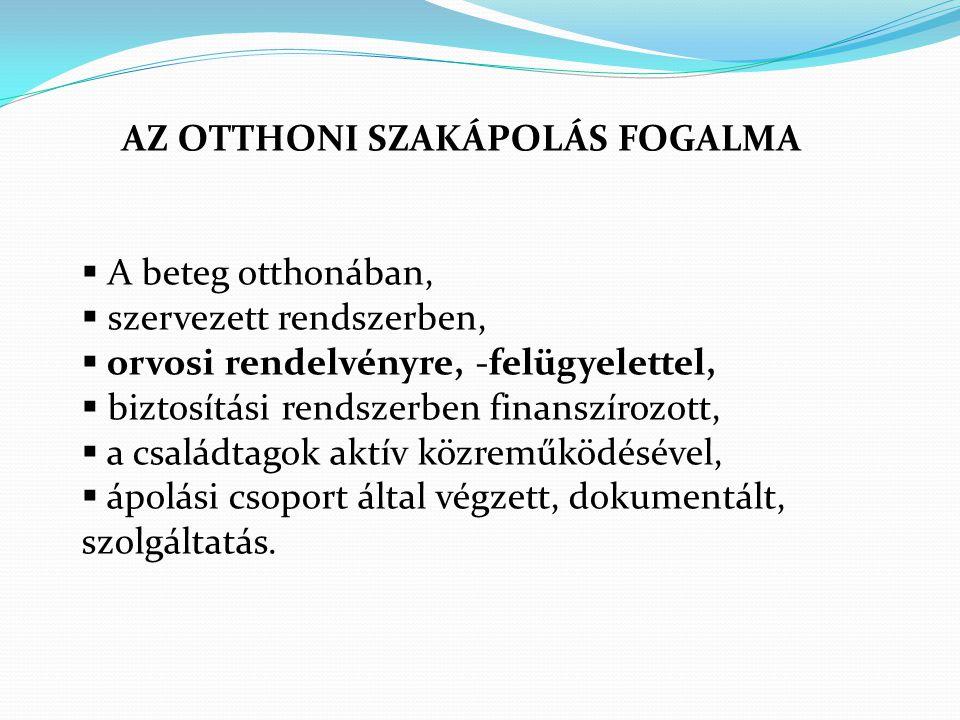 AZ OTTHONI SZAKÁPOLÁS FOGALMA