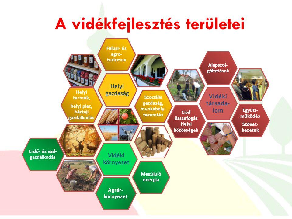A vidékfejlesztés területei