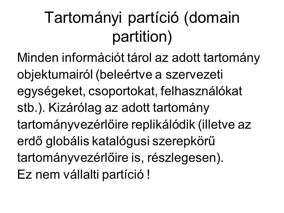 Tartományi partíció (domain partition)
