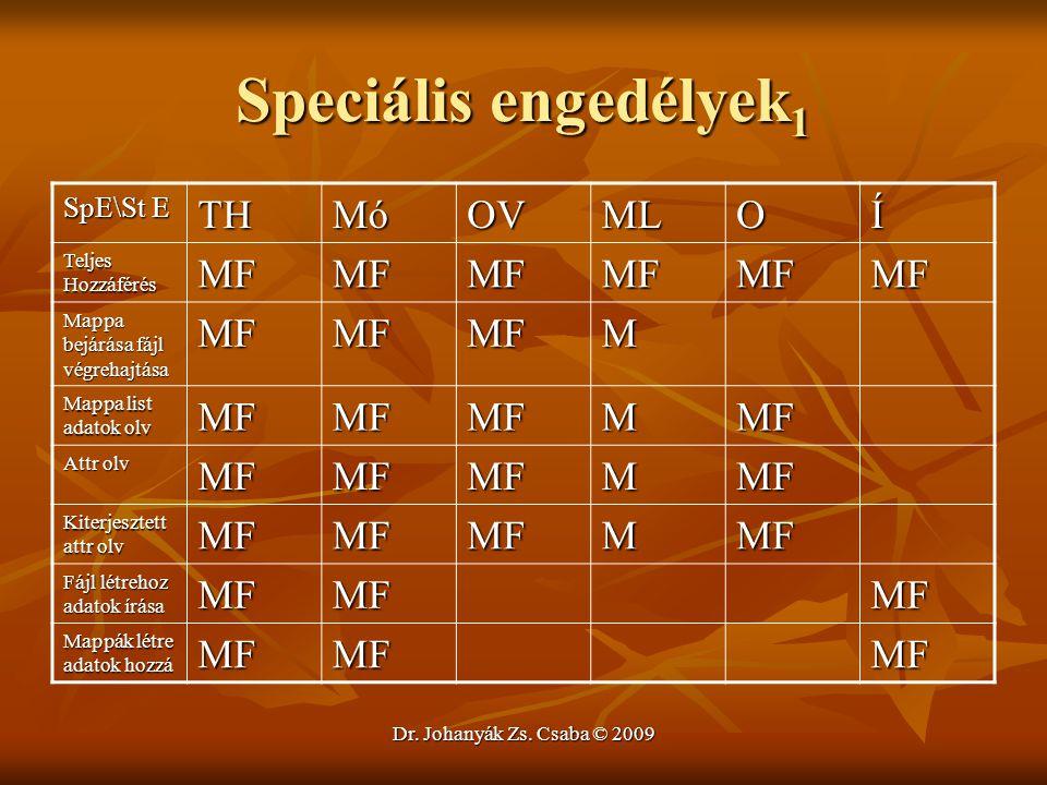 Speciális engedélyek1 TH Mó OV ML O Í MF M SpE\St E Teljes Hozzáférés