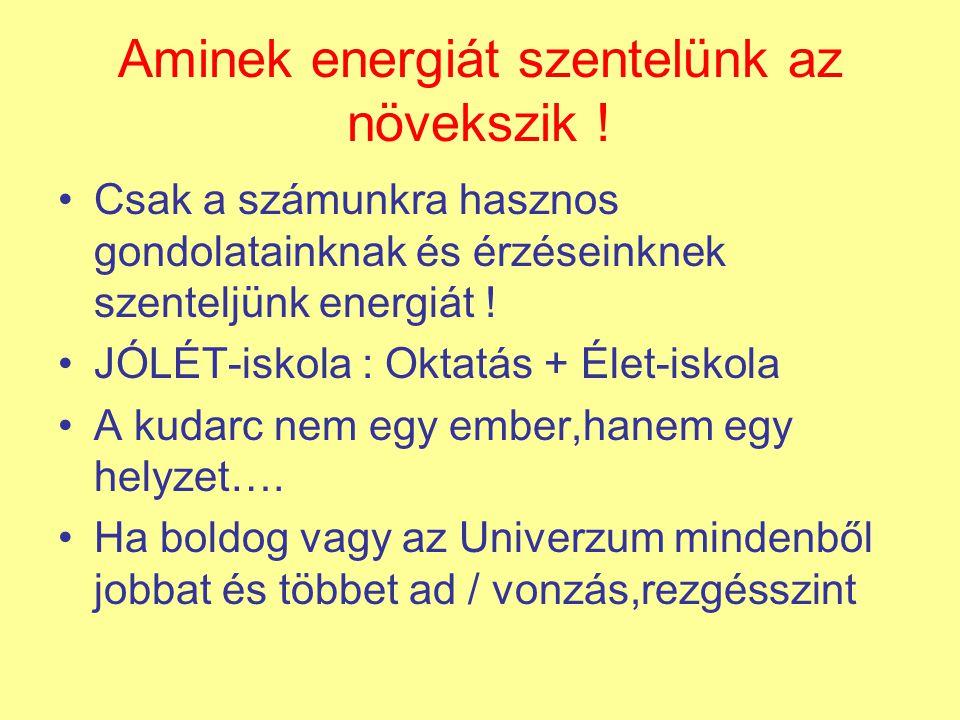 Aminek energiát szentelünk az növekszik !