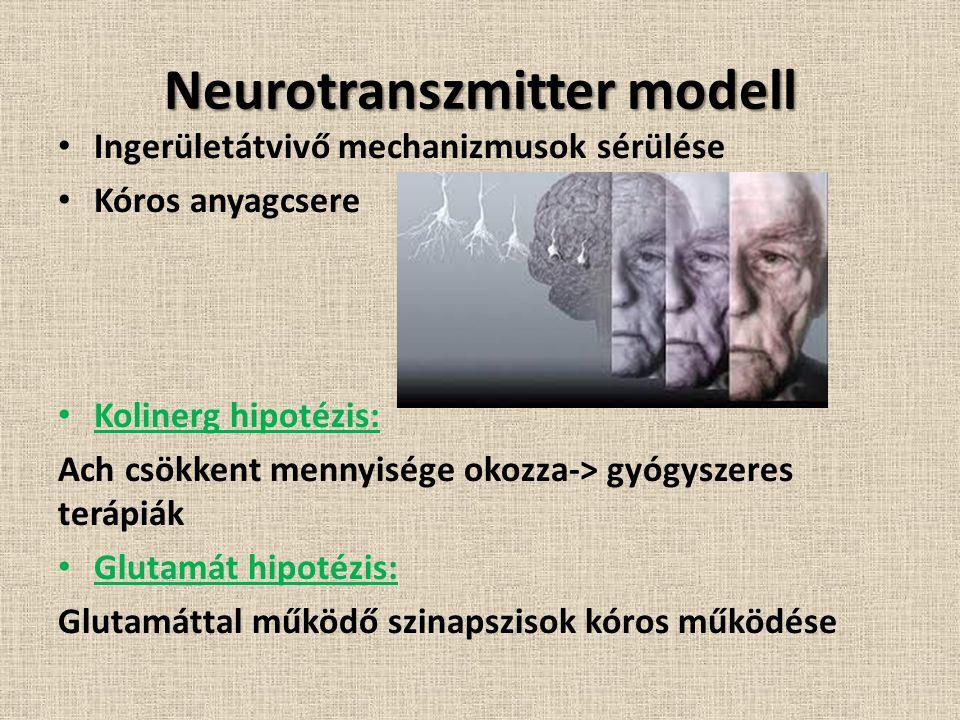 Neurotranszmitter modell