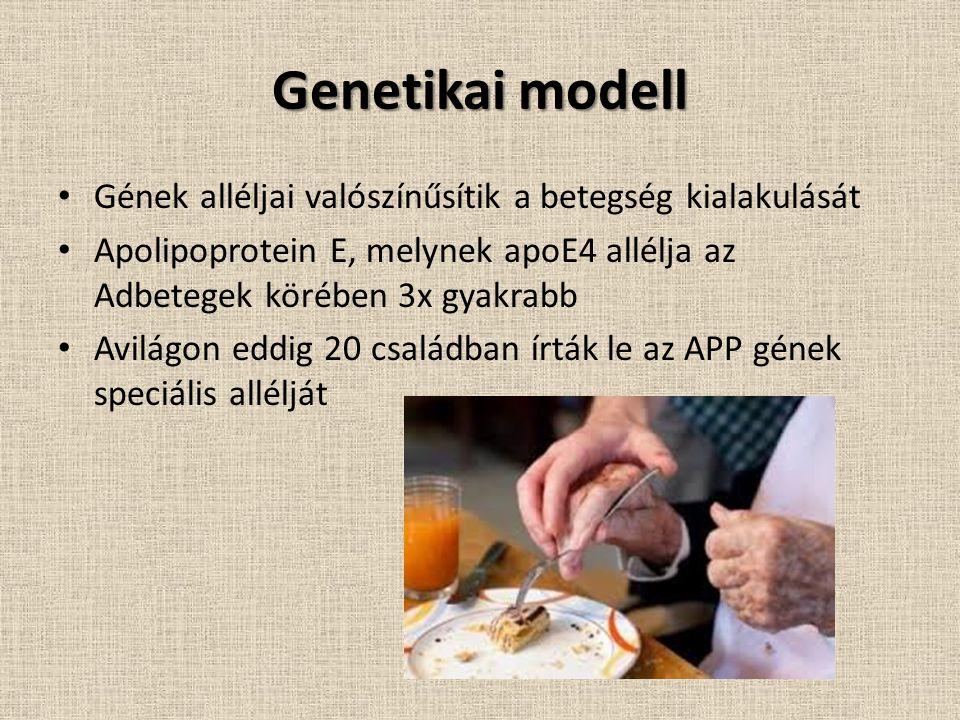 Genetikai modell Gének alléljai valószínűsítik a betegség kialakulását