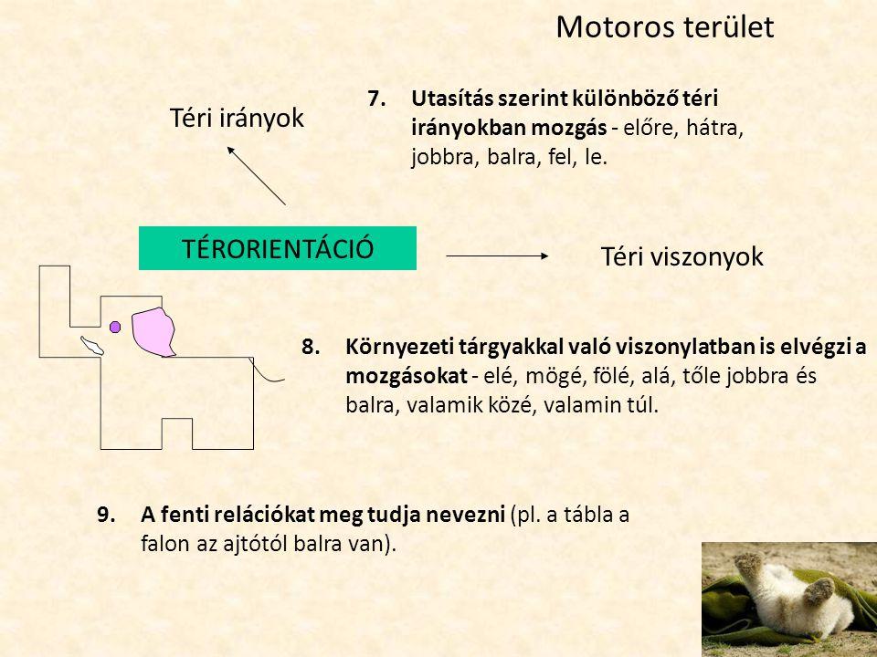 Motoros terület Téri irányok TÉRORIENTÁCIÓ Téri viszonyok