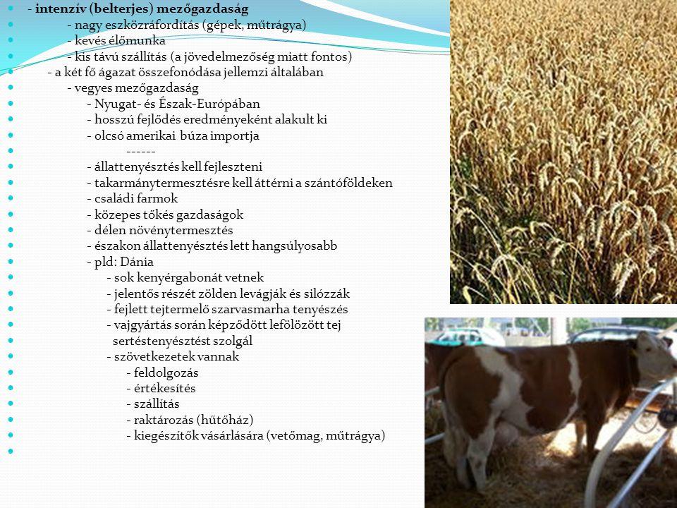 - intenzív (belterjes) mezőgazdaság
