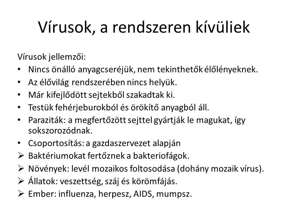 Vírusok, a rendszeren kívüliek