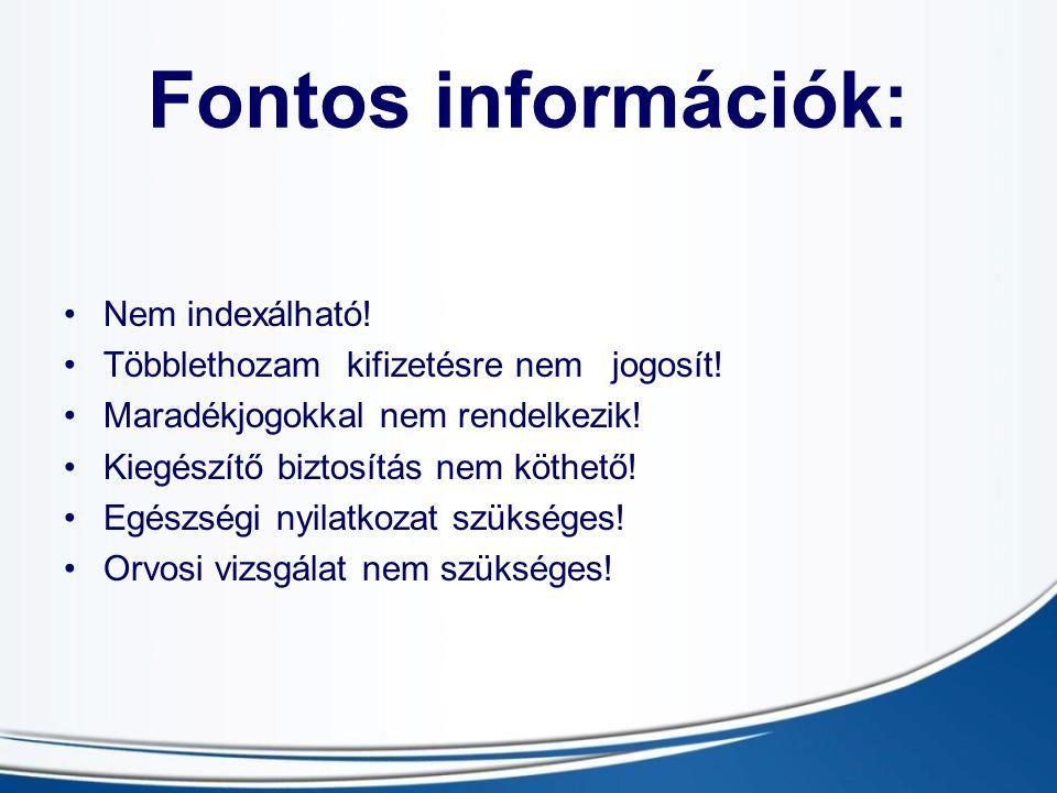 Fontos információk: Nem indexálható!
