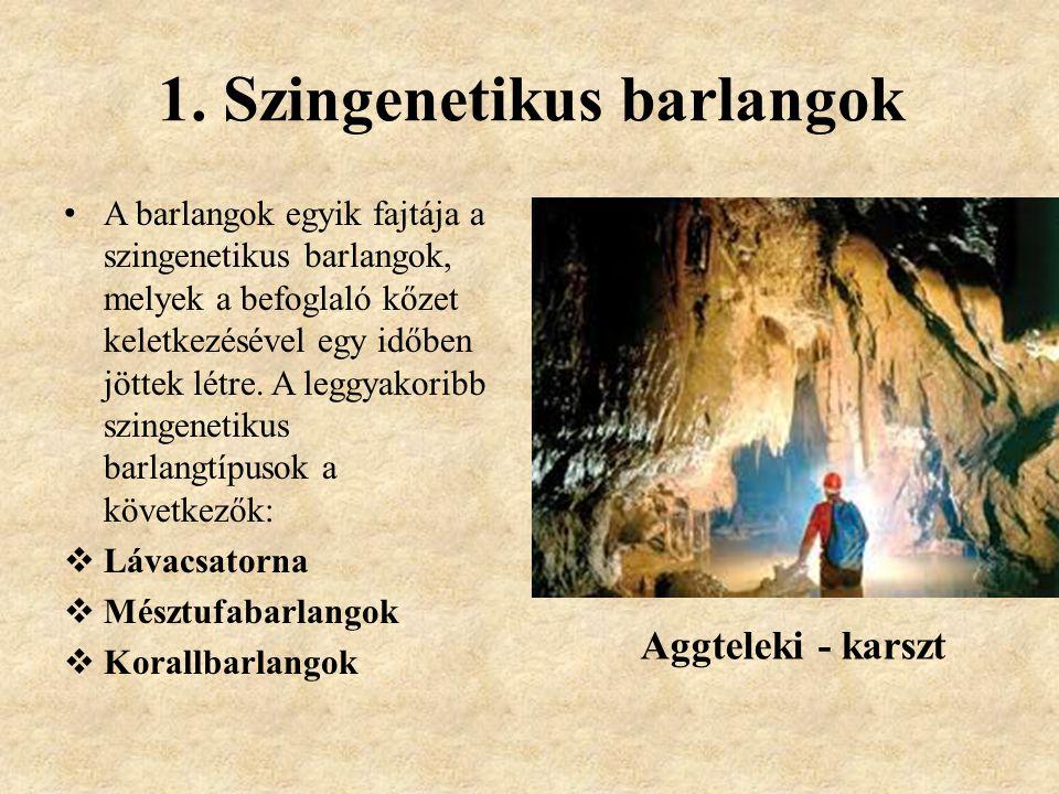 1. Szingenetikus barlangok