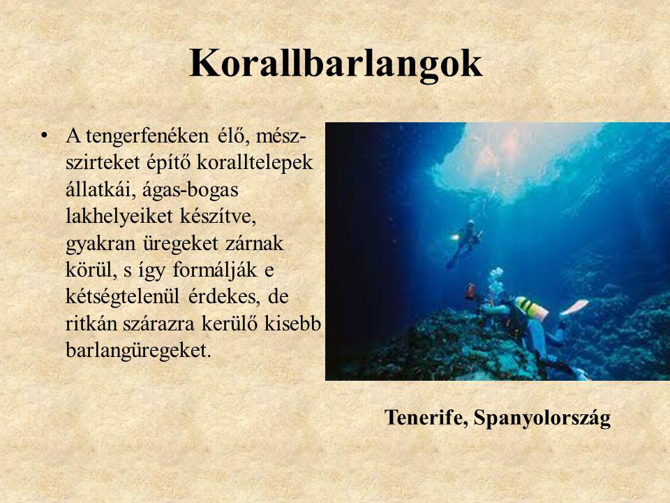 Korallbarlangok