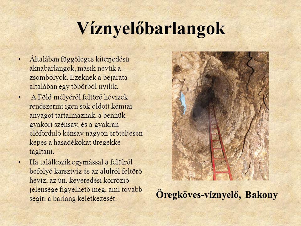 Víznyelőbarlangok Öregköves-víznyelő, Bakony