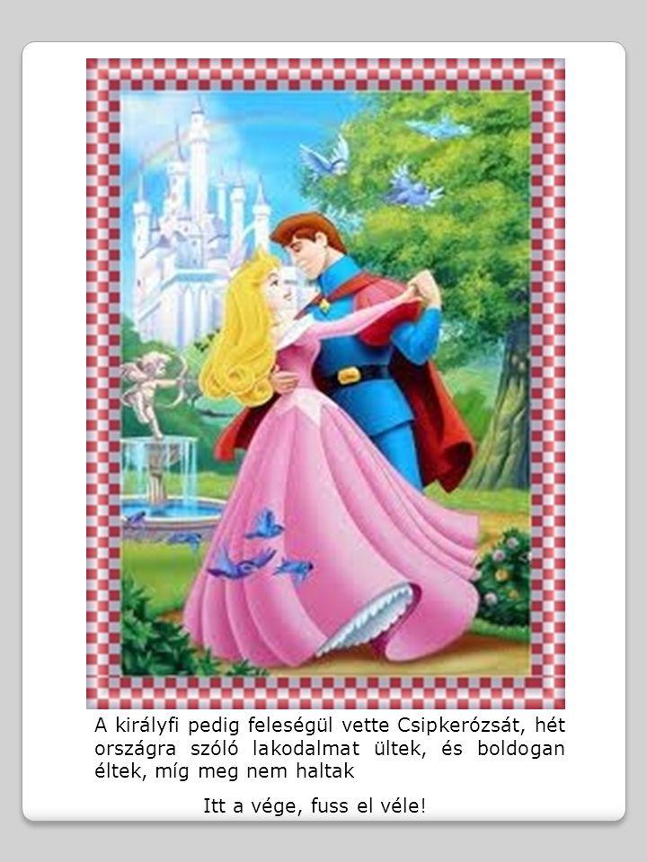 A királyfi pedig feleségül vette Csipkerózsát, hét országra szóló lakodalmat ültek, és boldogan éltek, míg meg nem haltak