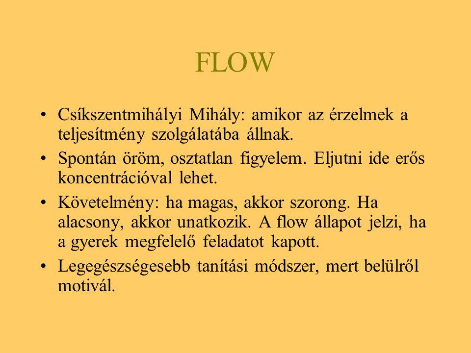 FLOW Csíkszentmihályi Mihály: amikor az érzelmek a teljesítmény szolgálatába állnak.