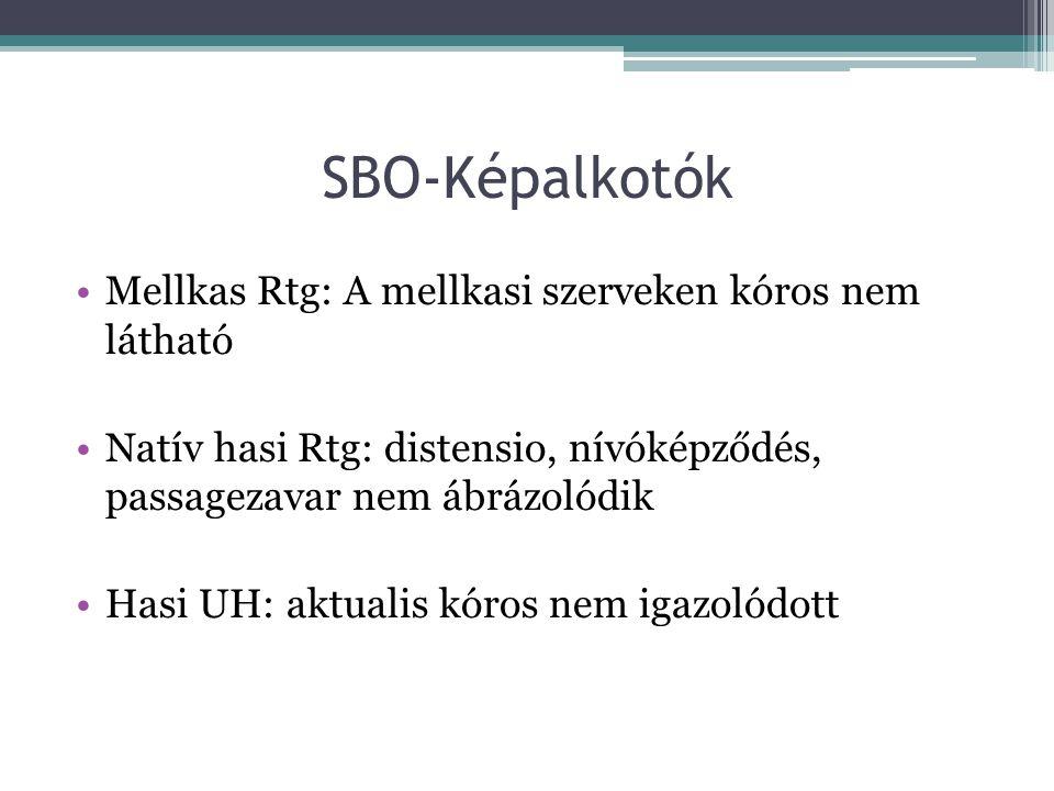 SBO-Képalkotók Mellkas Rtg: A mellkasi szerveken kóros nem látható