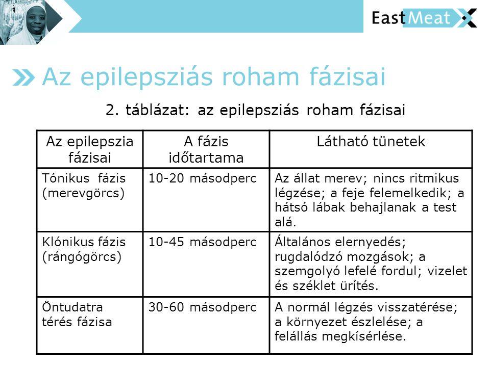 Az epilepsziás roham fázisai