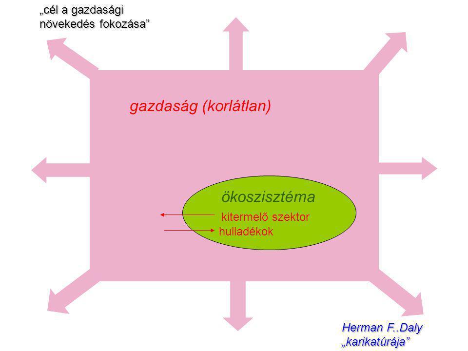 gazdaság (korlátlan) ökoszisztéma kitermelő szektor