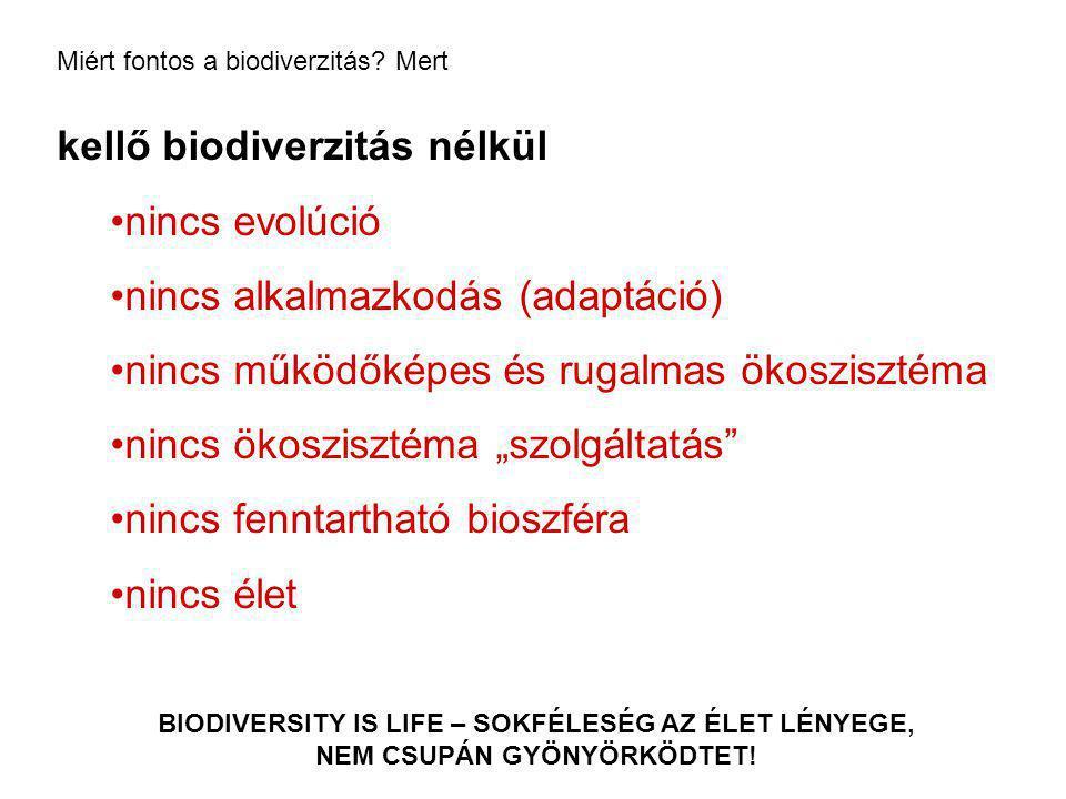 kellő biodiverzitás nélkül nincs evolúció