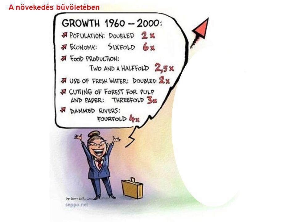 A növekedés bűvöletében
