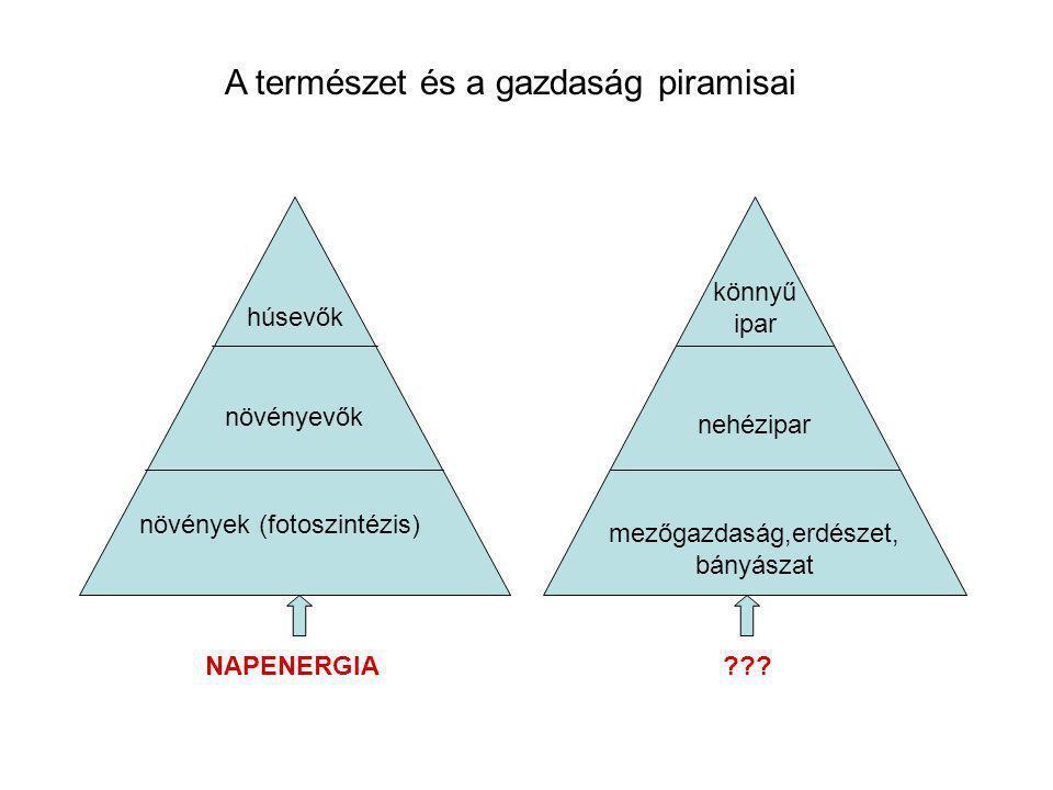 A természet és a gazdaság piramisai