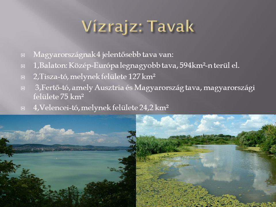 Vízrajz: Tavak Magyarországnak 4 jelentősebb tava van: