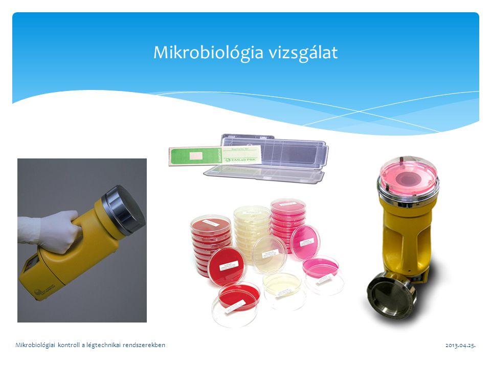 Mikrobiológia vizsgálat