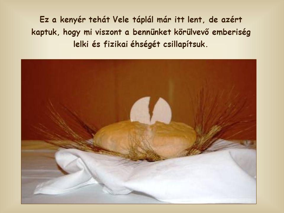 Ez a kenyér tehát Vele táplál már itt lent, de azért kaptuk, hogy mi viszont a bennünket körülvevő emberiség lelki és fizikai éhségét csillapítsuk.