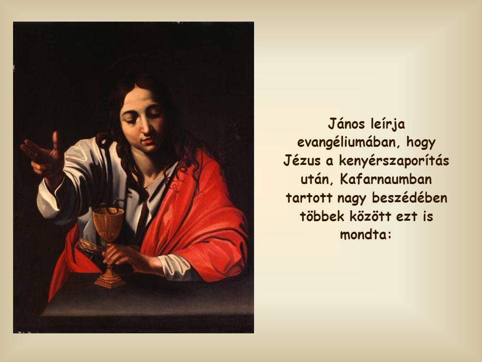 János leírja evangéliumában, hogy Jézus a kenyérszaporítás után, Kafarnaumban tartott nagy beszédében többek között ezt is mondta: