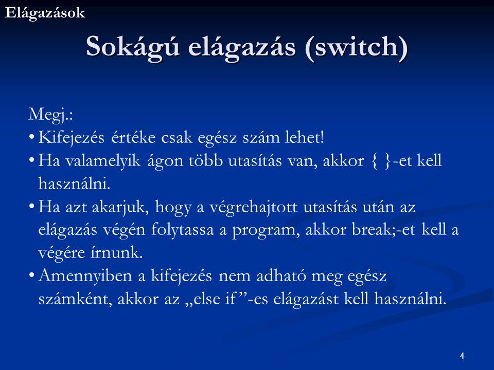 Sokágú elágazás (switch)