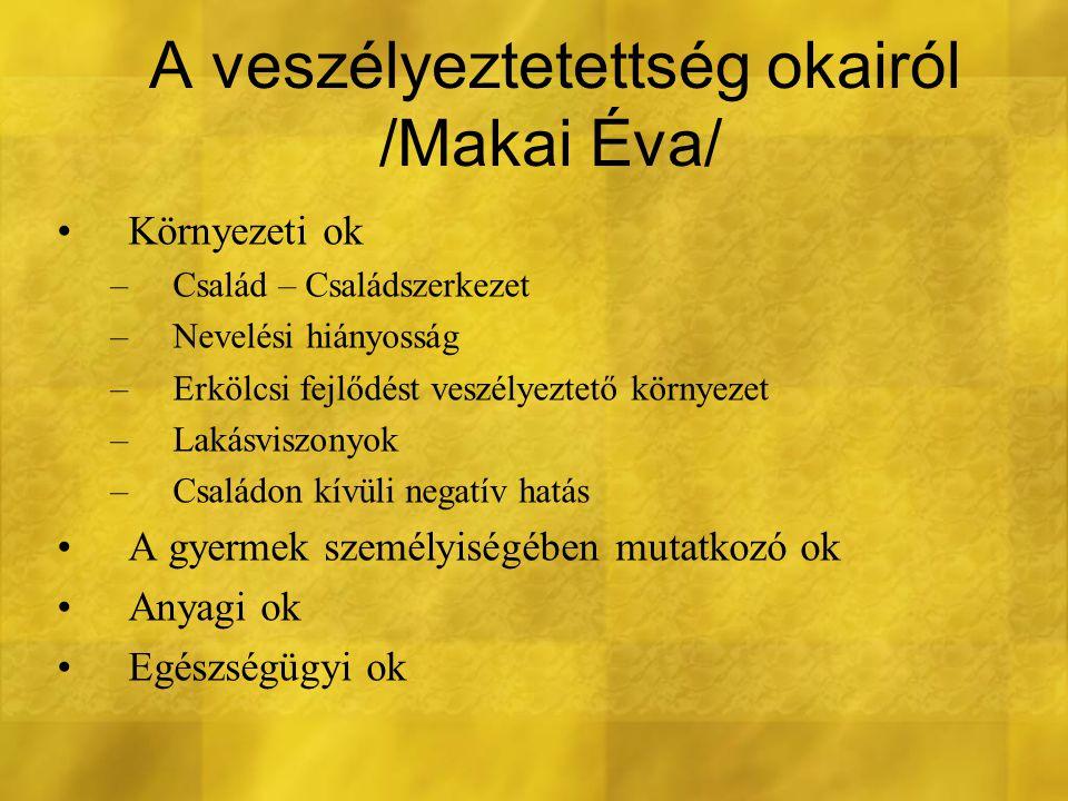 A veszélyeztetettség okairól /Makai Éva/