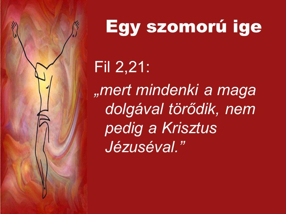 """Egy szomorú ige Fil 2,21: """"mert mindenki a maga dolgával törődik, nem pedig a Krisztus Jézuséval."""