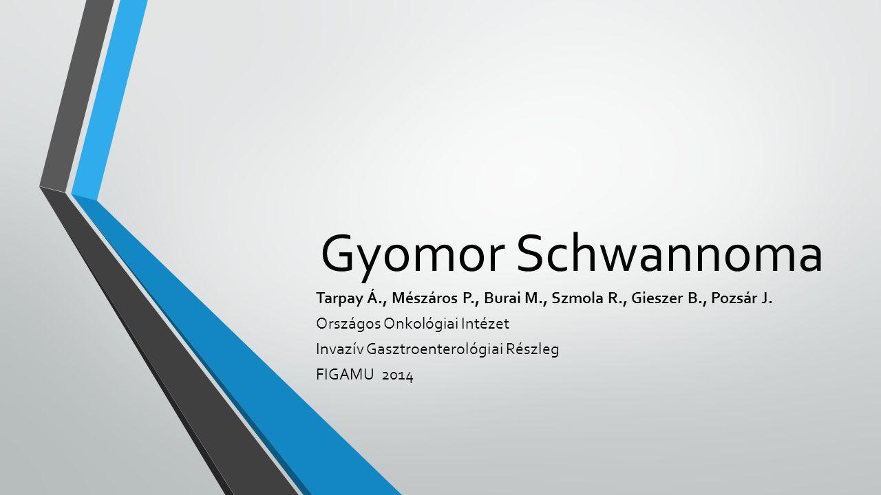 Gyomor Schwannoma Tarpay Á., Mészáros P., Burai M., Szmola R., Gieszer B., Pozsár J. Országos Onkológiai Intézet.