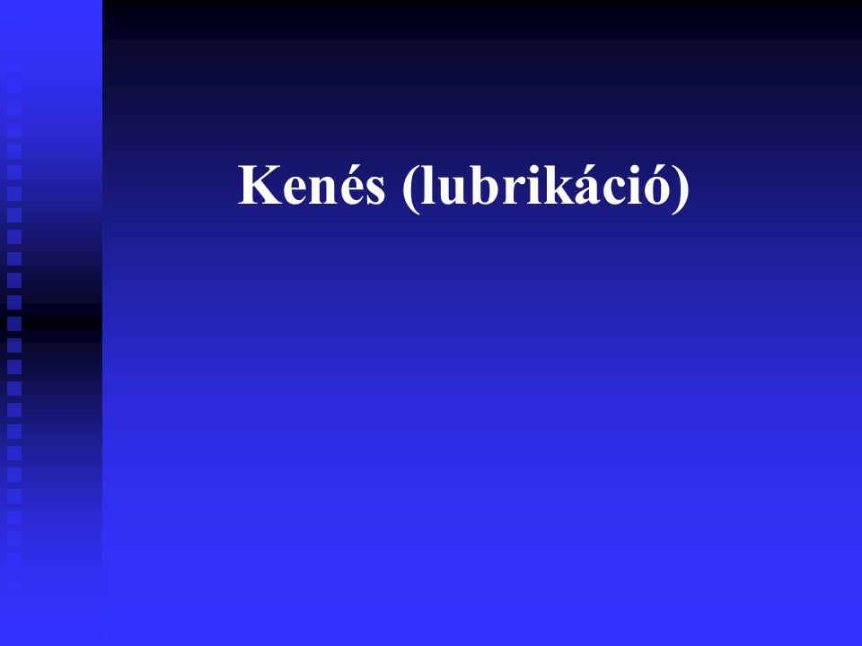 Kenés (lubrikáció)