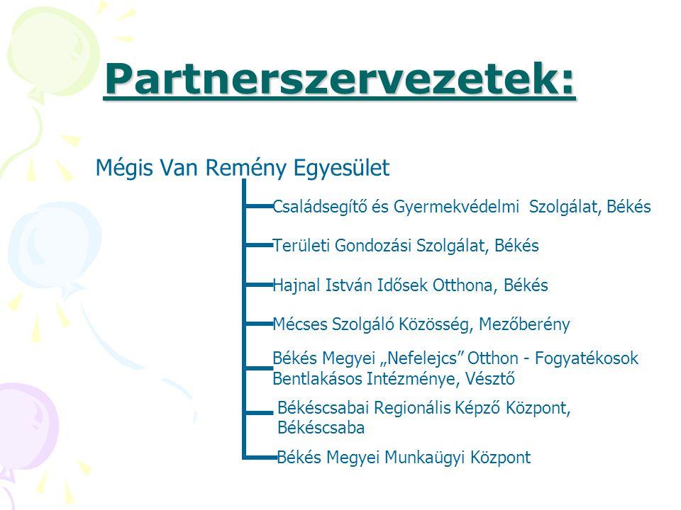Partnerszervezetek: