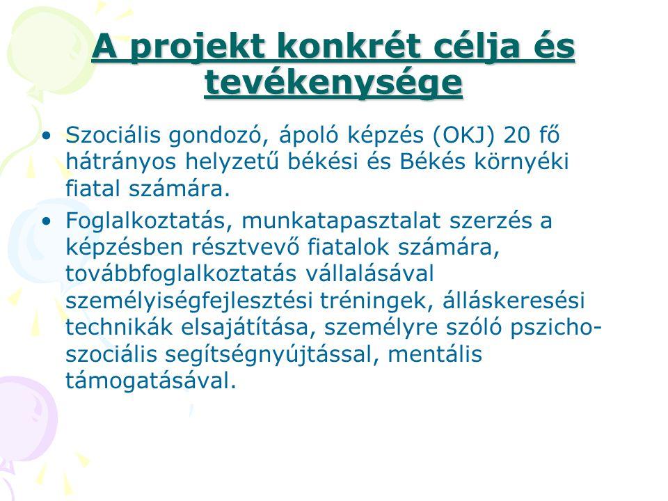 A projekt konkrét célja és tevékenysége
