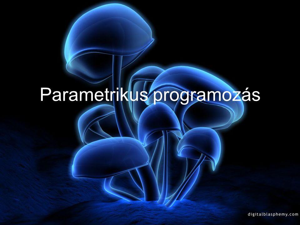 Parametrikus programozás