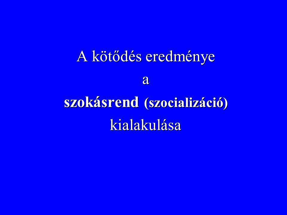 szokásrend (szocializáció)