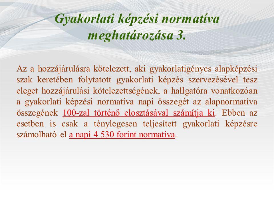 Gyakorlati képzési normatíva meghatározása 3.