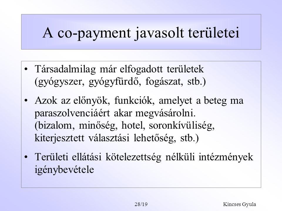 A co-payment javasolt területei