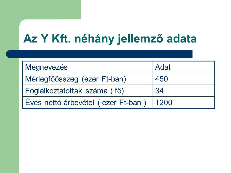 Az Y Kft. néhány jellemző adata