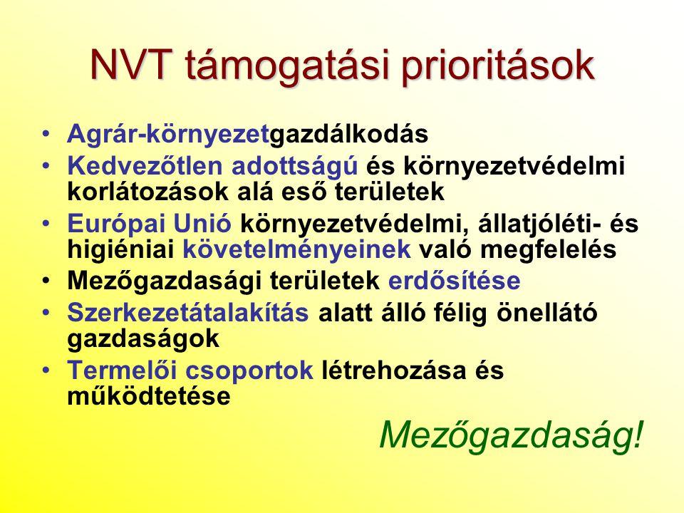 NVT támogatási prioritások